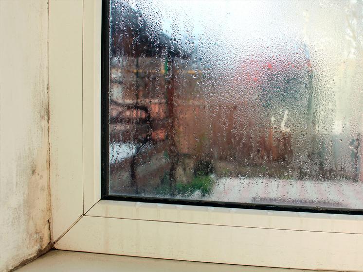 Consejos para reducir la humedad en casa