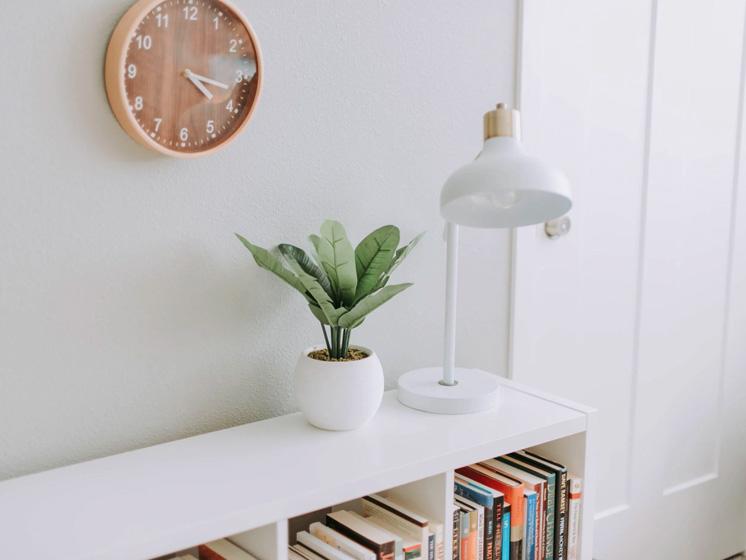 7 Tips para organizar tu casa en cuarentena según el 'feng shui' ¡que fluya la energía!